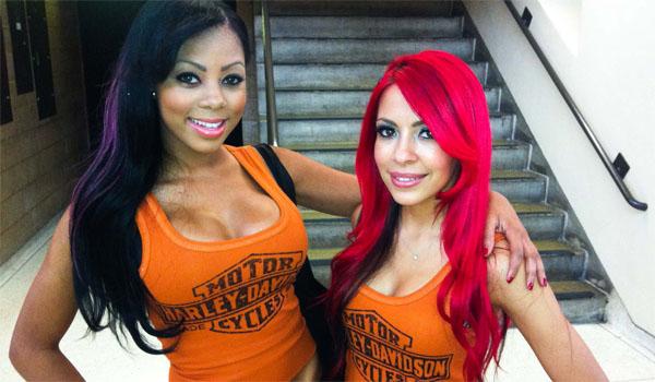 Harley Davidson Girls Bring Heat to UFC | Daily Girls @ Female Update