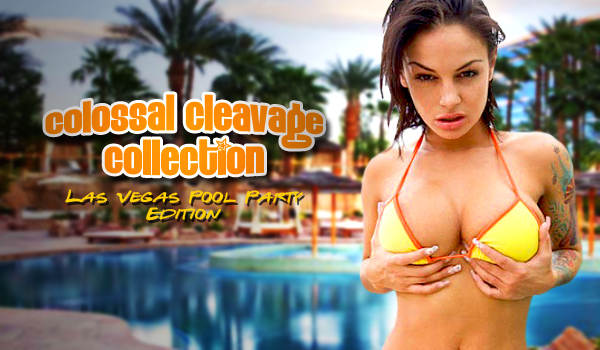 Las Vegas Pool Party Babes   Daily Girls @ Female Update
